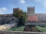 テオドシウス城壁1.jpeg